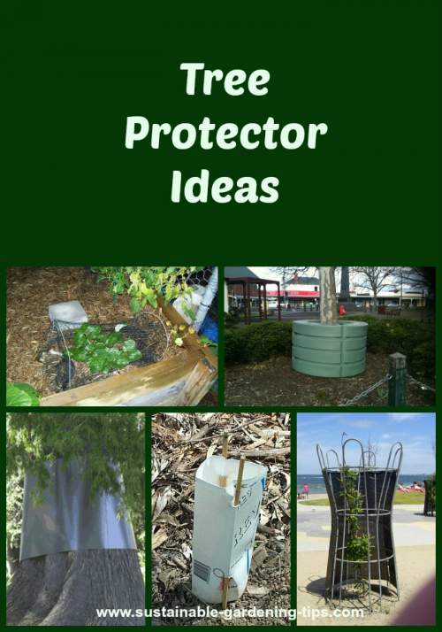 Tree protector ideas